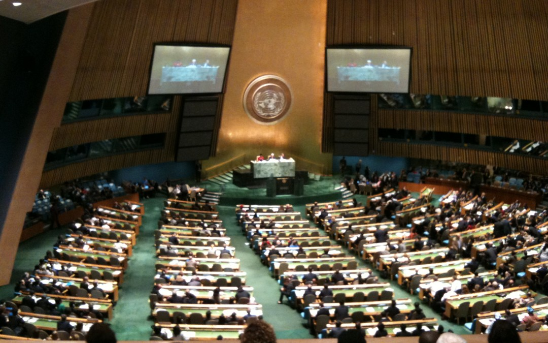69th Session of the UN General Assembly (UNGA 69)